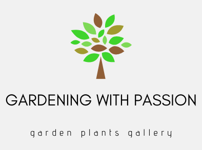 gardening with passion