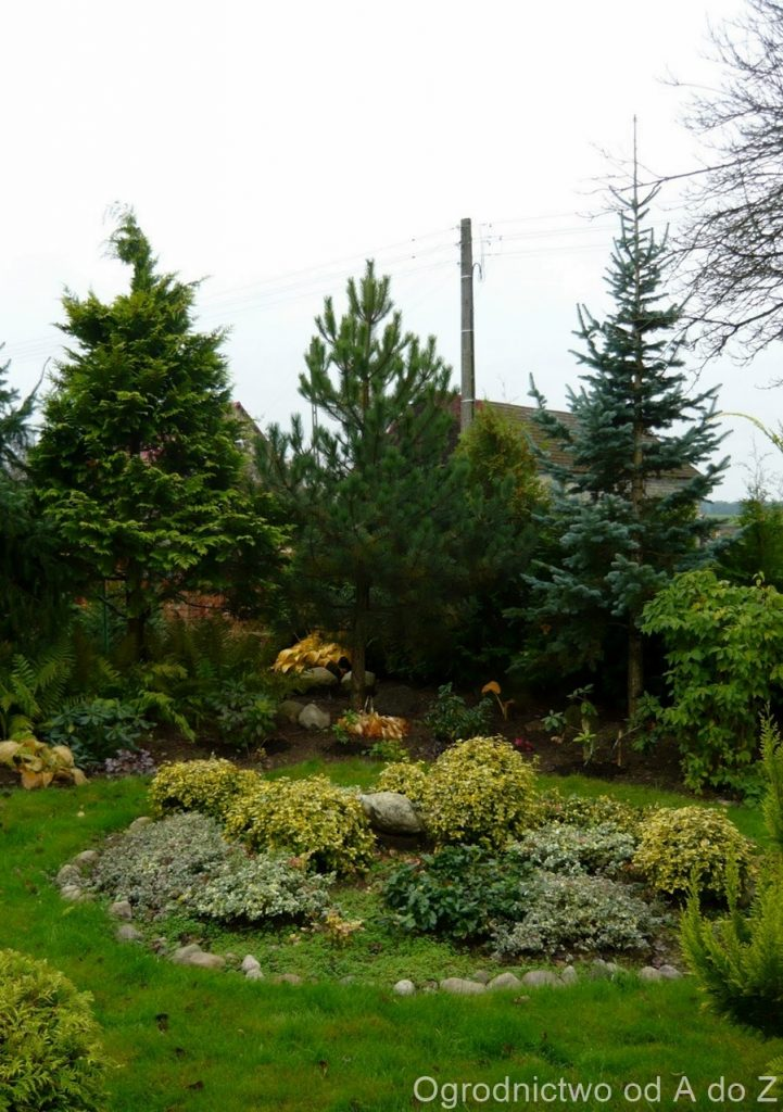 Jesień w ogrodzie 2013